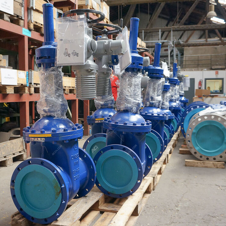Automated gate valves
